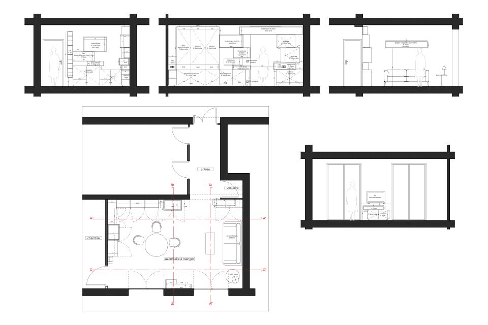 amenagement-salon-design-de-mobilier-sur-mesure-optimisation-espace-rangement-appartement-parisien-7